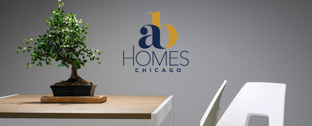 The Color of Money - AB Homes Chicago